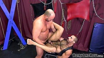 HAIRYANDRAW Mature Sub Amir Badri Hammered By Muscle Daddy